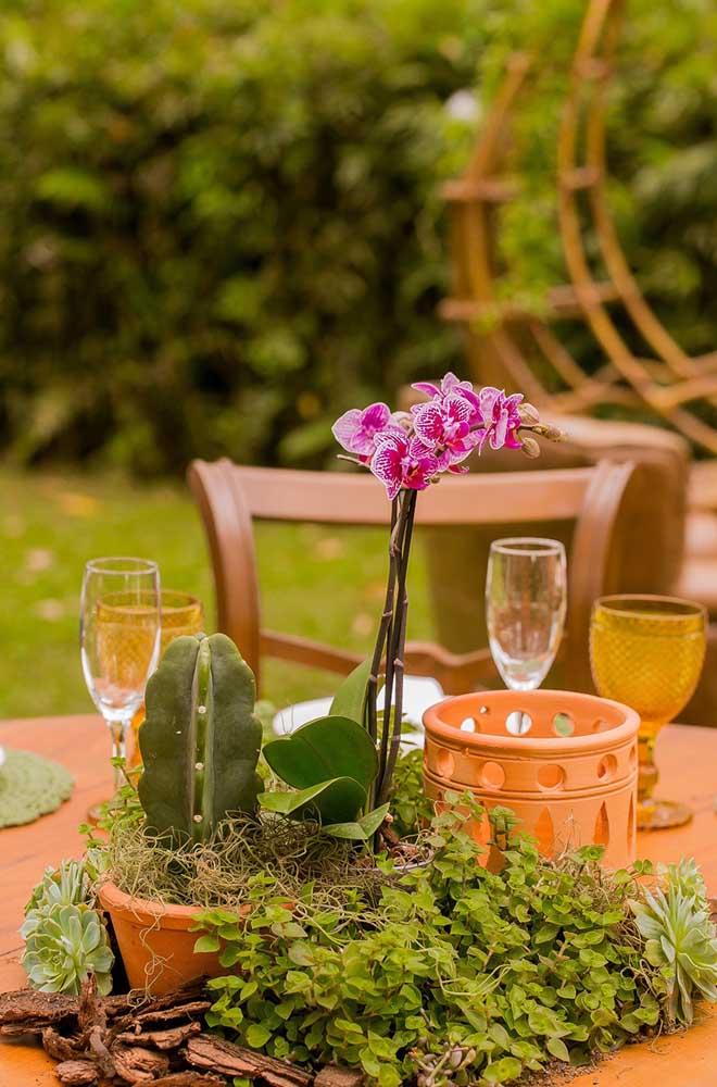 Procurando por uma flor de inverno para decoração do casamento? Aposte na orquídea Denphal, principalmente se a intenção for criar uma decor rústica