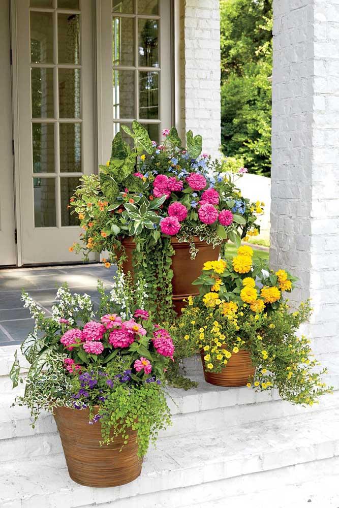 Cravos rosas e amarelos dando as boas vindas para quem chega em casa