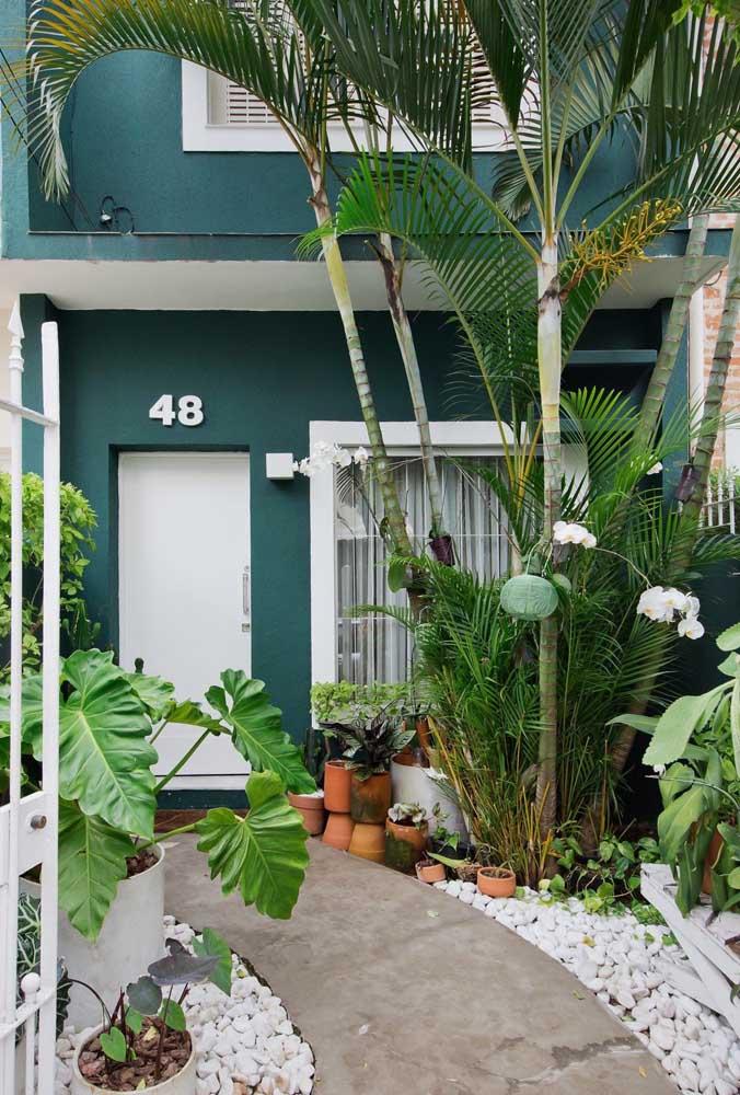 Um belíssimo tom de verde nas paredes para garantir profundidade ao jardim na entrada da casa