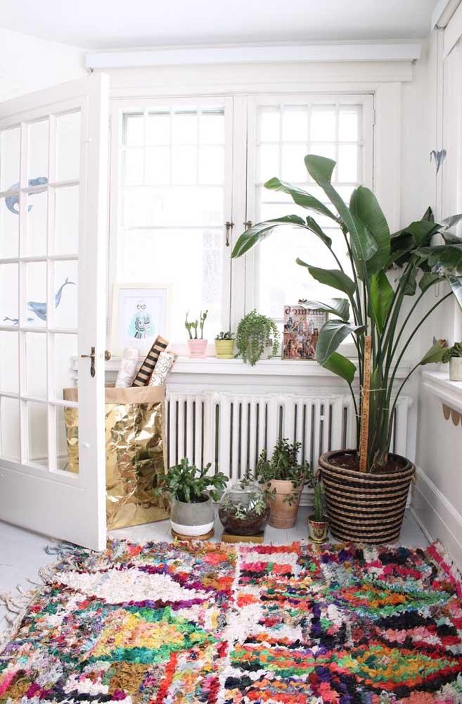 Anota aí essa combinação: plantas mais tapete de frufru