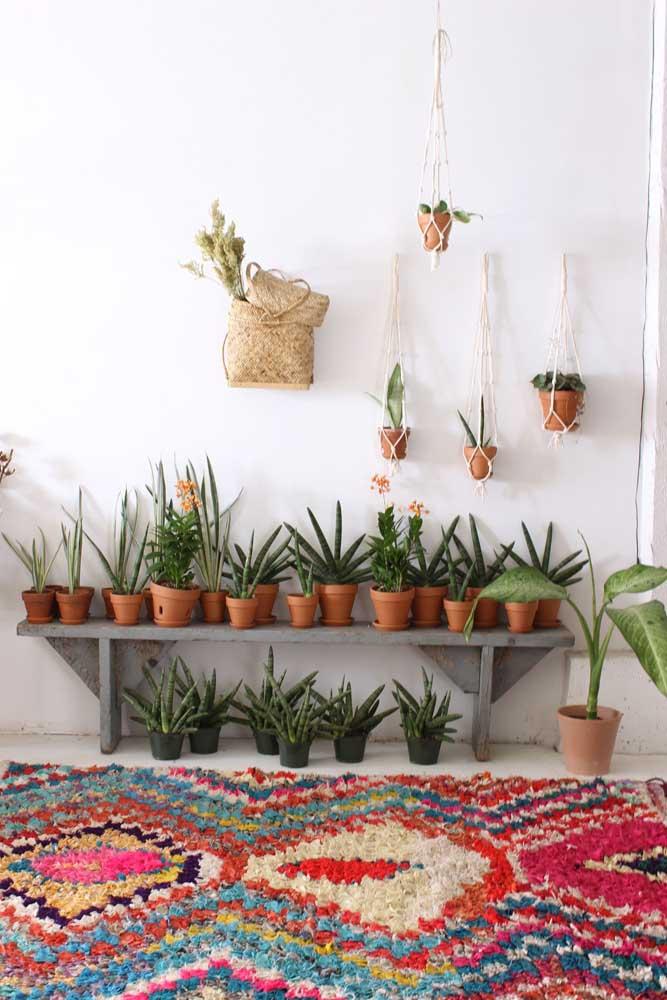 Valorize aquele seu cantinho com plantas e um colorido tapete de frufru