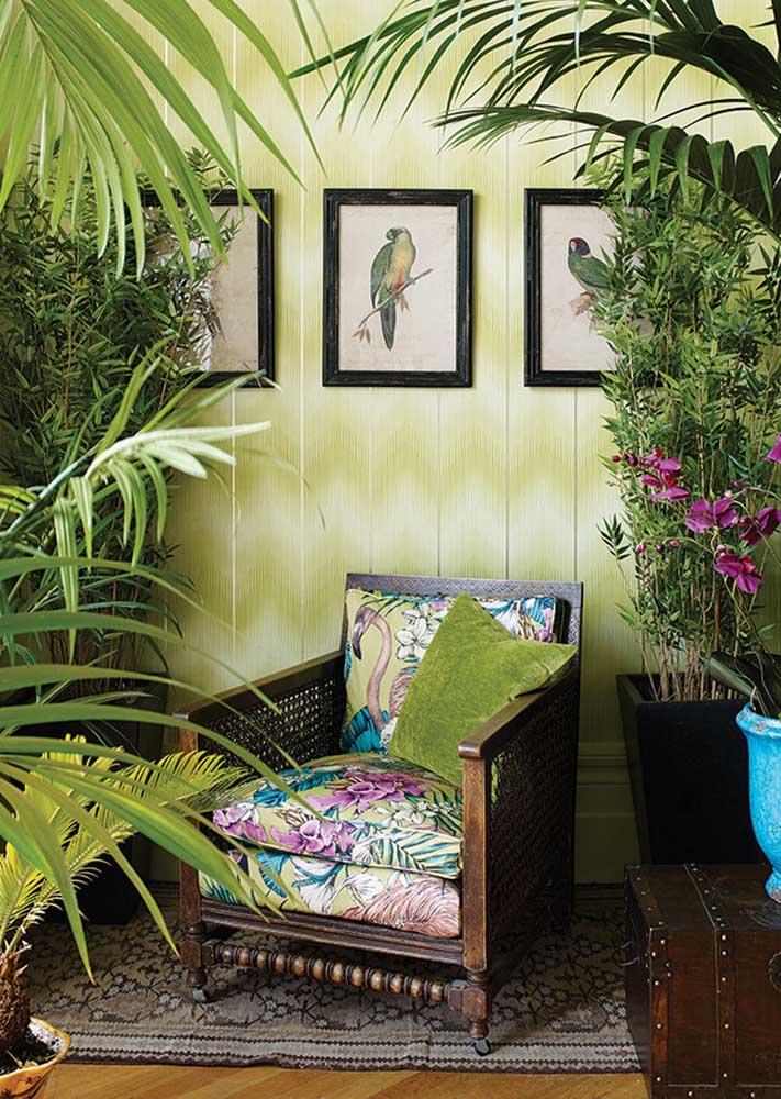 Sala verde natural. Um verdadeiro jardim dentro de casa