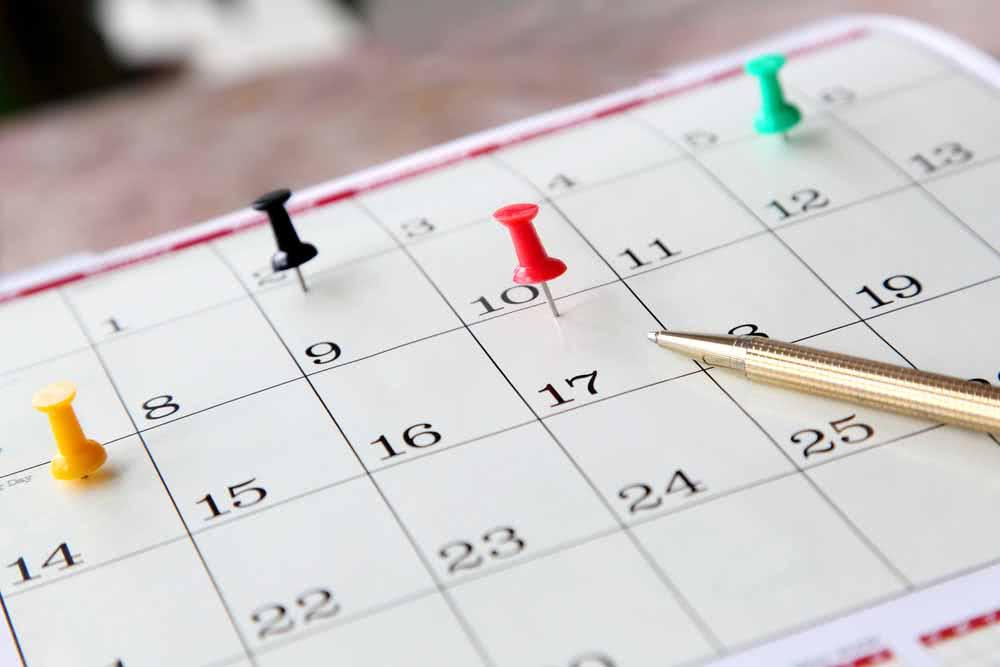 Divida as tarefas e monte um cronograma