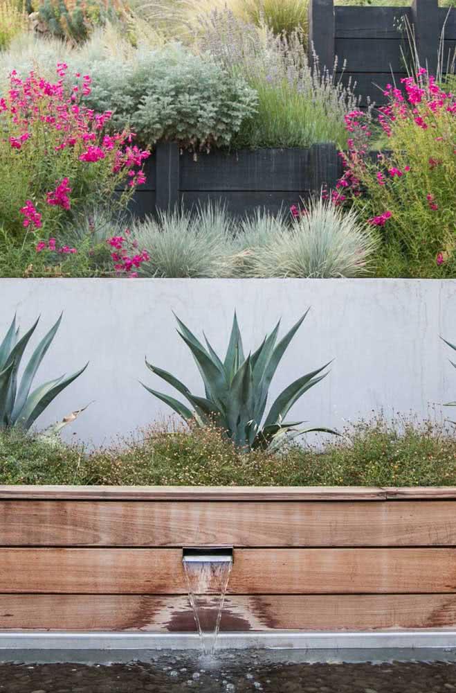 Quer um jardim tropical ou com ares desérticos? Então aposte na Agave!