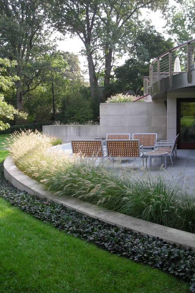 O Capim de Texas é outra planta ótima para jardins, especialmente se a intenção é criar demarcações e contornos