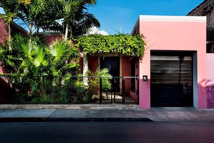 Rosa incrível para a fachada da casa.