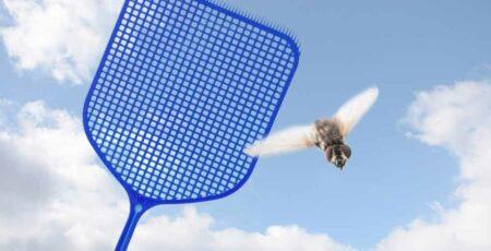 Como espantar moscas
