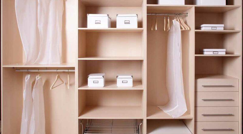 Mofo no guarda-roupa: como tirar e dicas essenciais para a limpeza