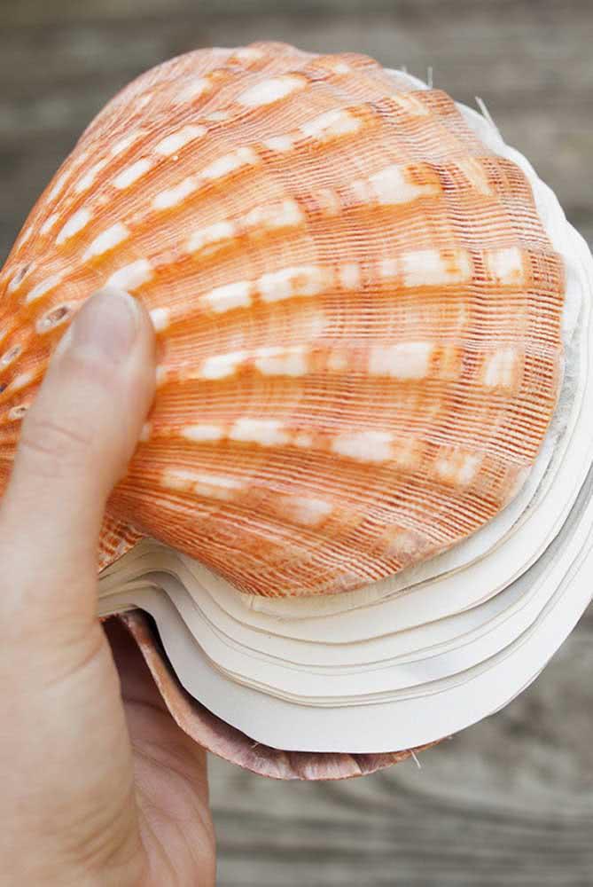 Artesanato com conchas do mar grandes. Você pode fazer o que quiser!