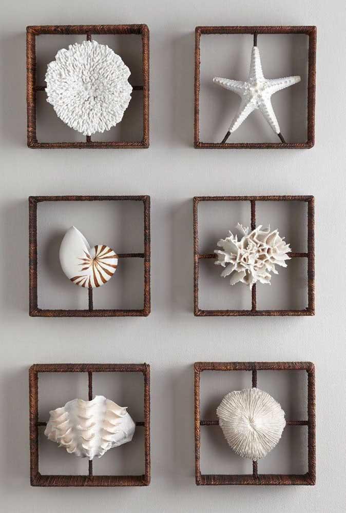 Quadros feitos com diferentes tipos de conchas, além de estrelas do mar