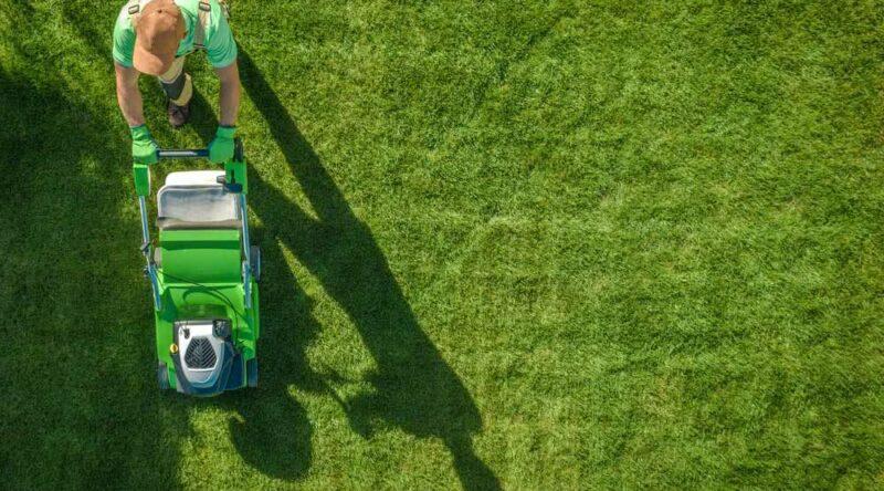 Limpeza de terreno: como fazer passo a passo, métodos e manutenção