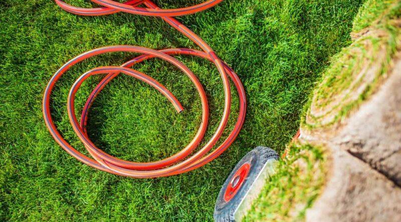Como plantar grama: veja um guia prático para você fazer o plantio