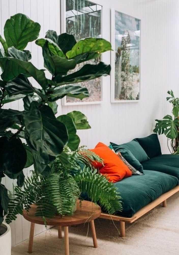Verde do sofá e das plantas!