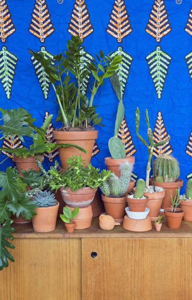 Uma incrível composição de verde: a Zamioculca misturada a outras plantas em vasos.