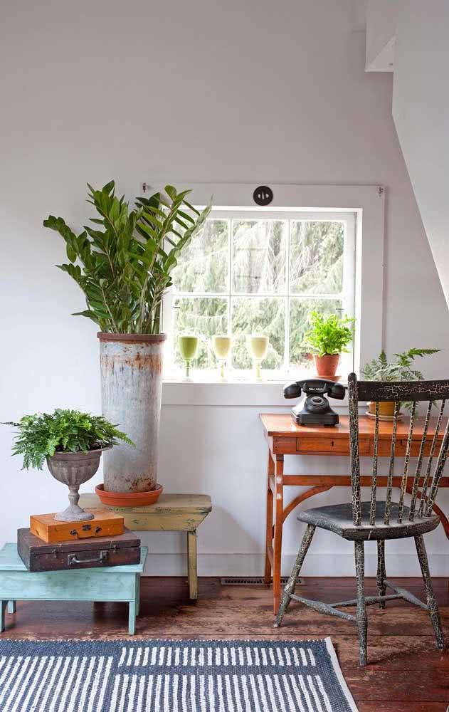 Zamioculca em vaso alto para decorar esse cantinho do ambiente