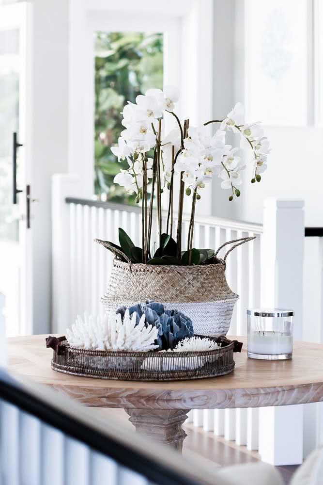 Um vaso exuberante de orquídeas brancas do gênero Phalaenopsis