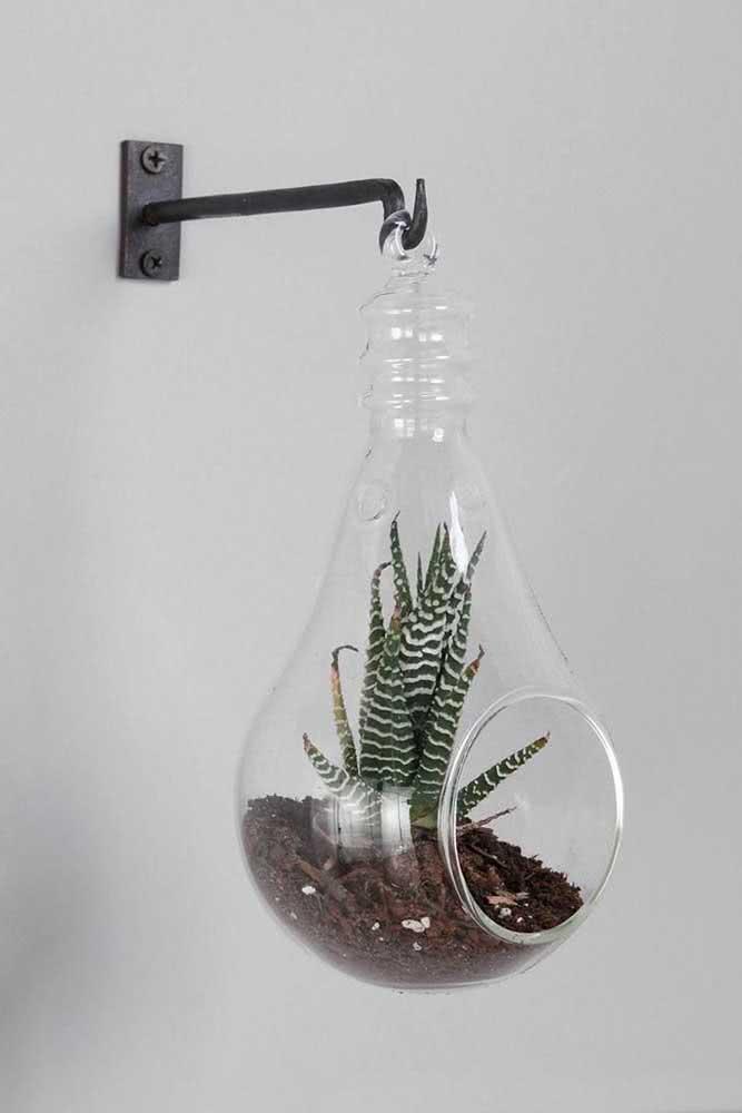 Um terrário que simula uma lâmpada