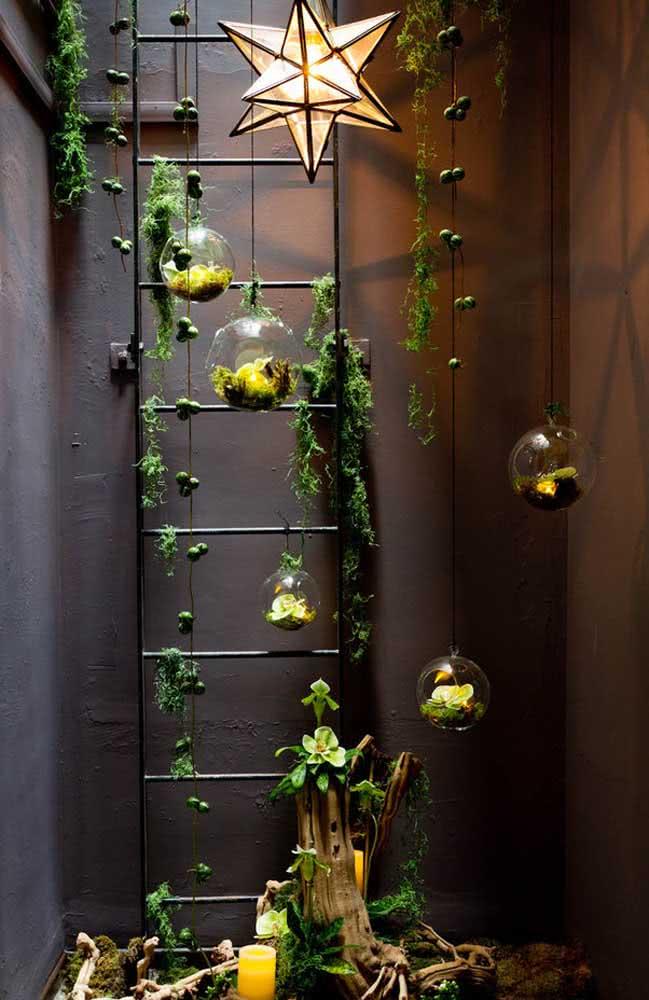E o que acha de um jardim de inverno cheio de terrários?