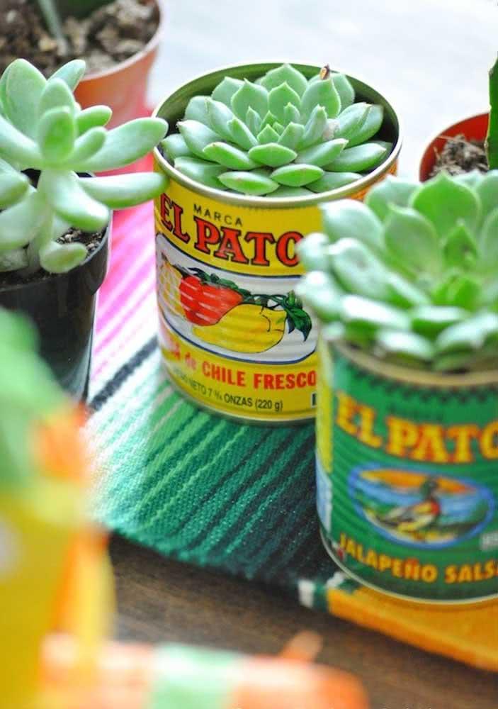As suculentas podem ser plantadas em latinhas que você tem em casa. Olha só como elas ficam charmosas!