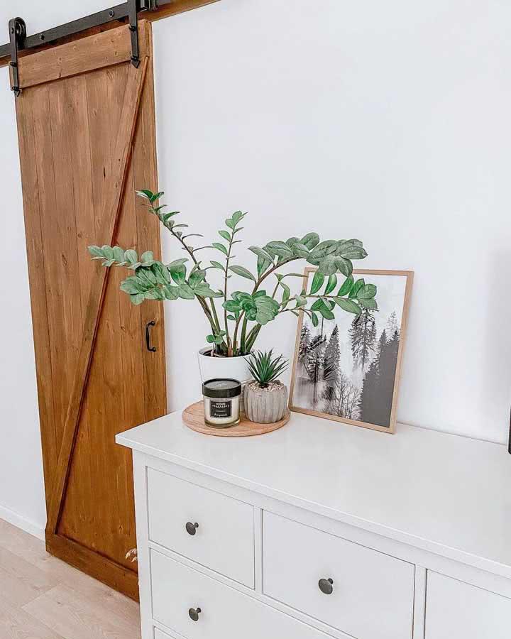 Vaso de Zamioculca no aparador em conjunto com um vaso menor, um potinho e uma bela fotografia com moldura.
