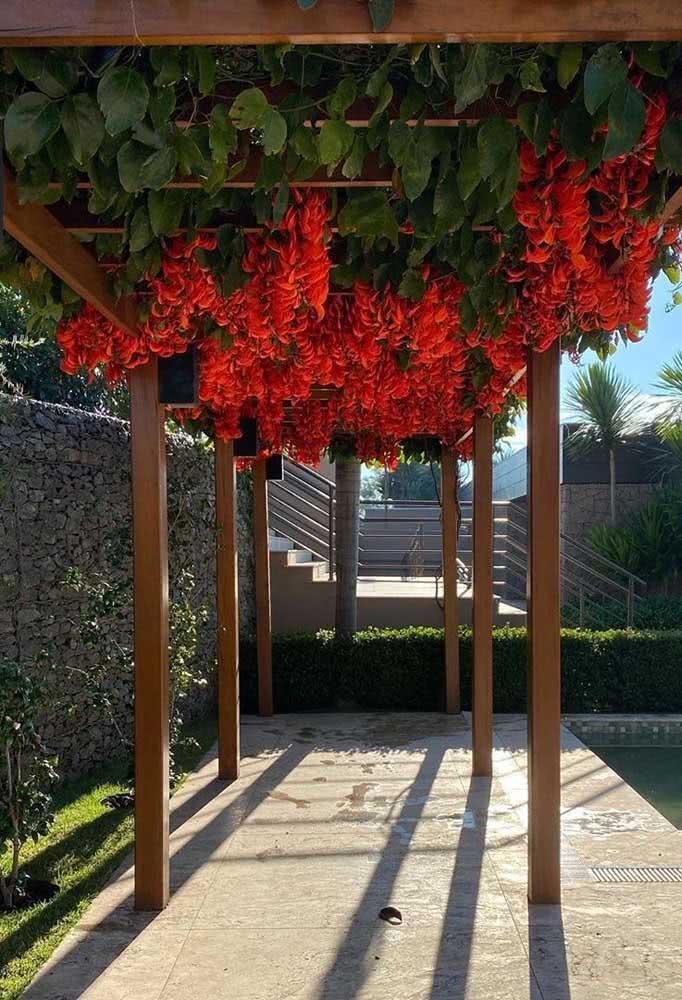 Um espaço sombreado e florido para relaxar durante o dia