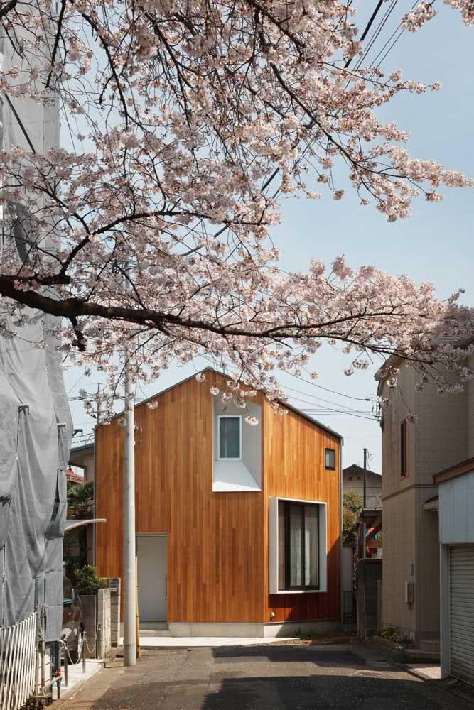 As cerejeiras dão as boas vindas na entrada da casa japonesa