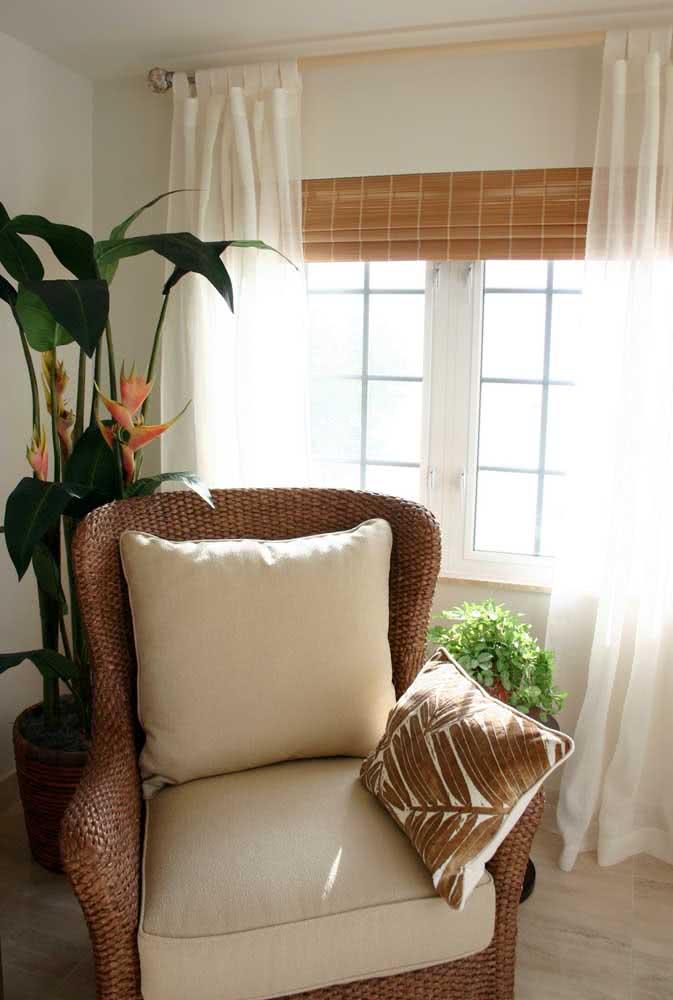 Dentro de casa, a helicônia precisa ser colocada perto da janela