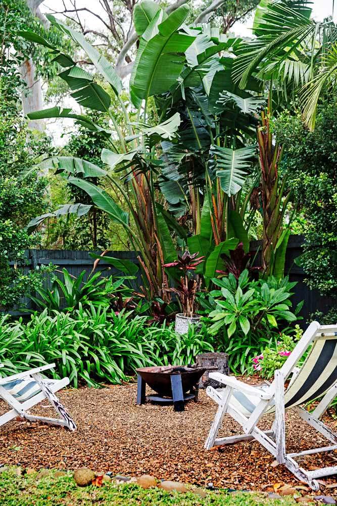 Um refúgio verde no quintal cercado de helicônias e outras espécies tropicais