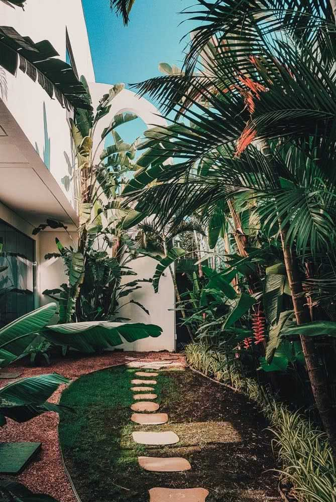 Helicônias e palmeiras! Uma combinação que não tem erro