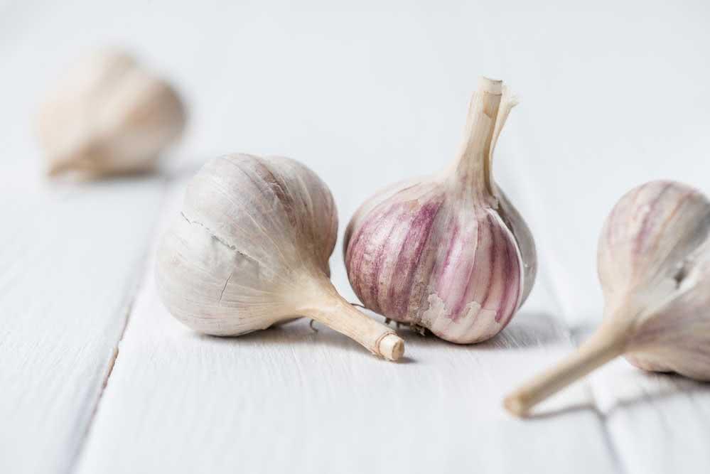 Como plantar alho: passo a passo simples para fazer em casa