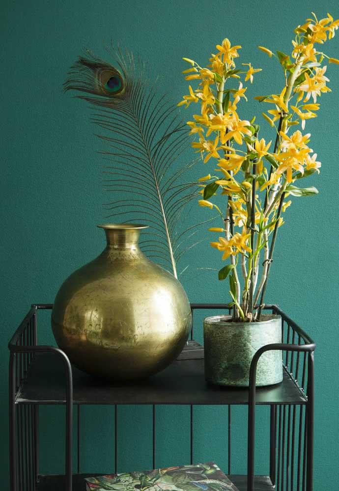 A parede azul esverdeada se tornou o pano de fundo ideal para essa orquídea bambu