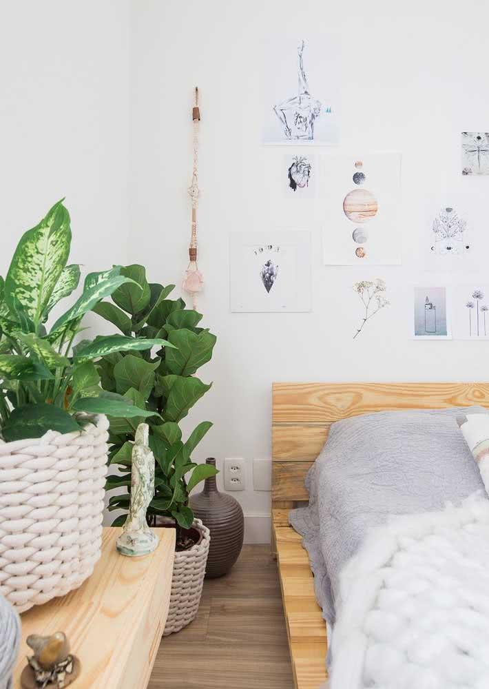 Quarto simples com cama de pallet, gravuras fixadas na parede e vasos de plantas na lateral.