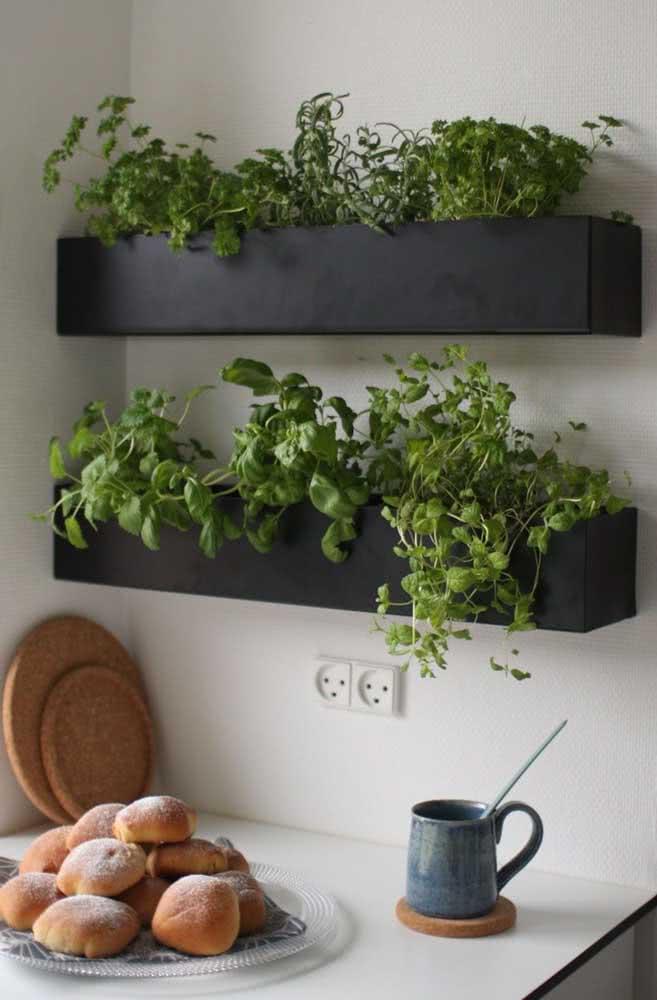 Na cozinha, a floreira ganha ervas e temperos