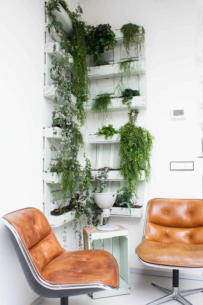 Floreira de pallet para o escritório. Dentro dela, folhagens pendentes e que contrastam com o branco da parede