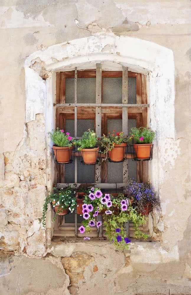 Floreiras na janela. Aqui, os vasinhos de barro foram colocados dentro dos suportes de ferro