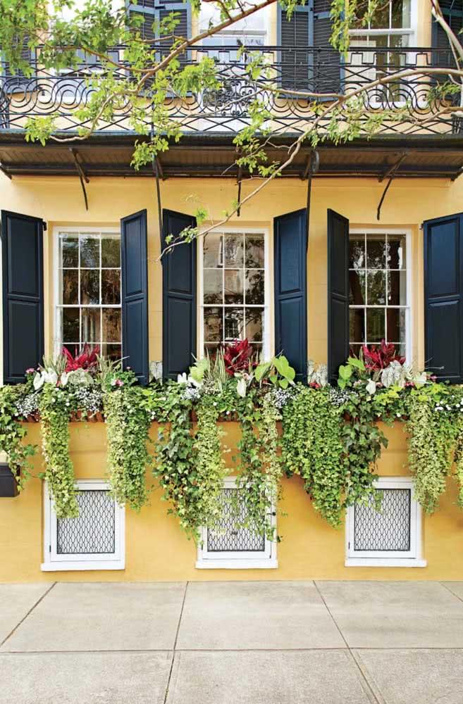 Floreira de parede com folhagens. A graça aqui está no contraste entre as cores das plantas e das paredes