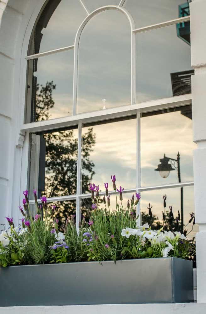Quer lugar melhor para colocar a floreira do que o parapeito da janela?