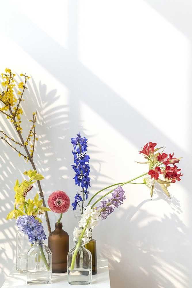 Astromélias e orquídeas formam um cantinho exótico e colorido por aqui