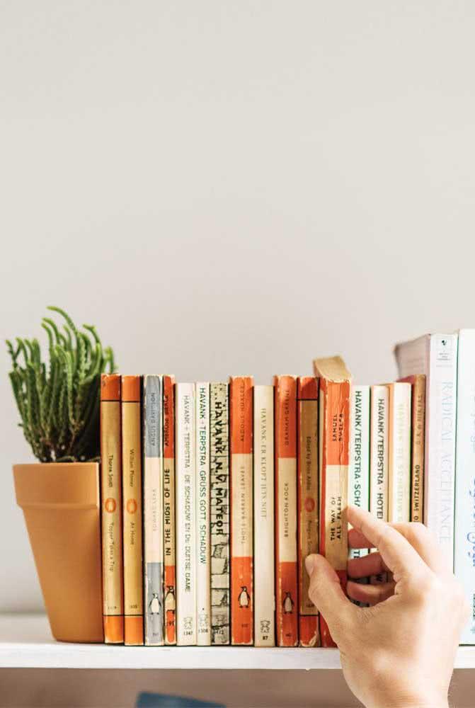 Meio vaso! Uma ideia criativa de aparador de livros