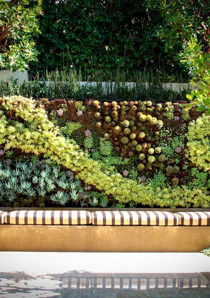 Jardim vertical de suculentas montado no muro do quintal. A dica é ordenar cores e texturas para criar um desenho original