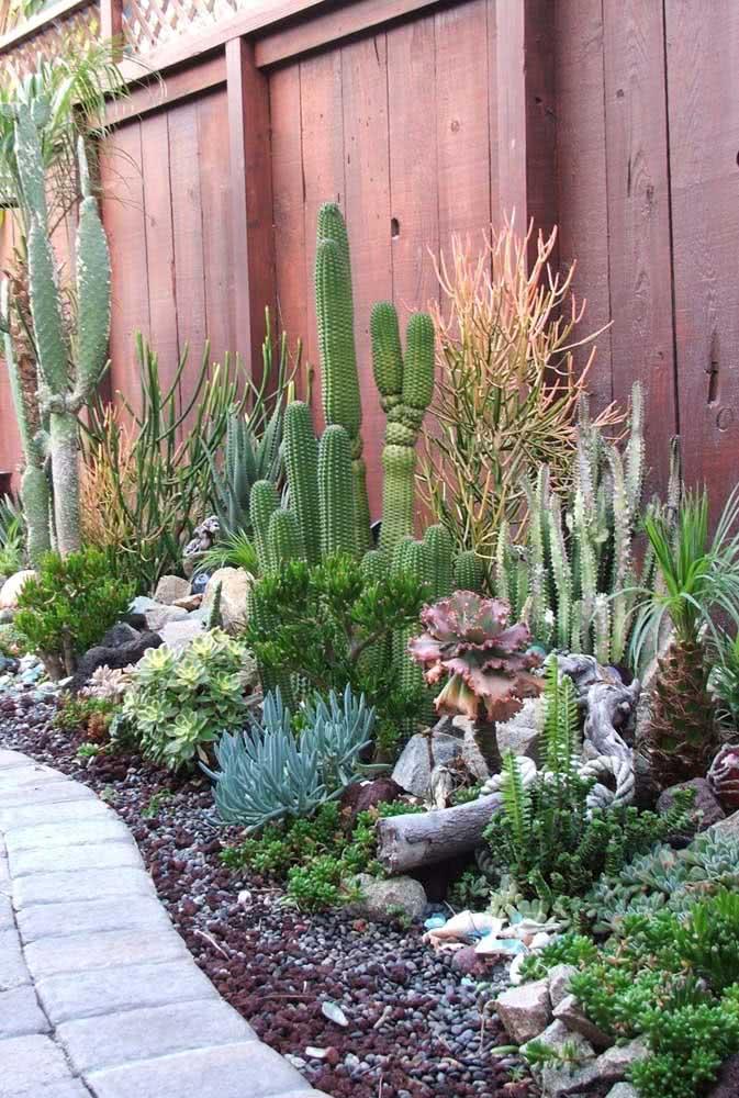 Jardim de cactos e suculentas ao melhor estilo mexicano. A cerca em tom de terracota completa o paisagismo