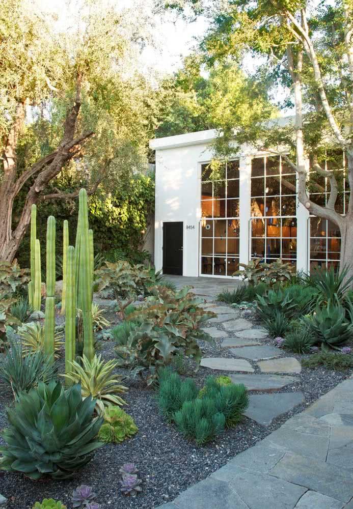Um jardim rústico de suculentas para a fachada da casa moderna