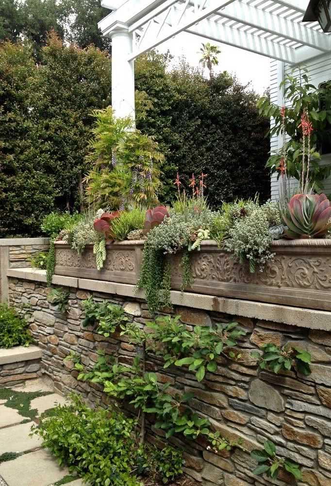As jardineiras de concreto abrigam esse jardim de suculentas no quintal