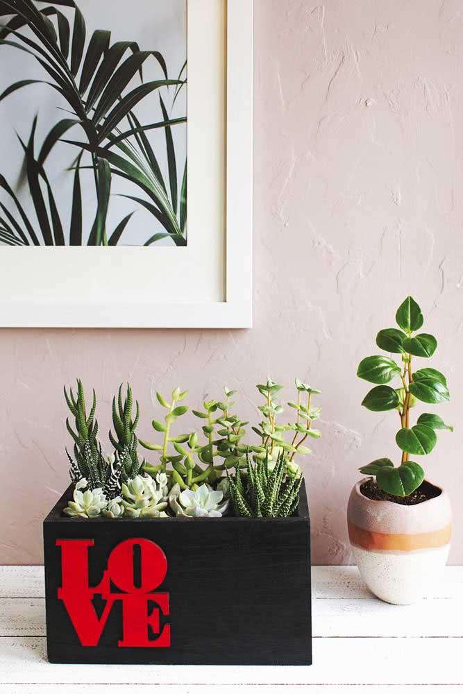 Aqui, a caixa de madeira recebe o mini jardim de suculentas