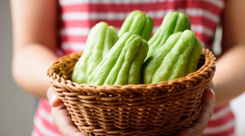 Como cozinhar chuchu: veja como escolher, benefícios e como preparar na sua cozinha