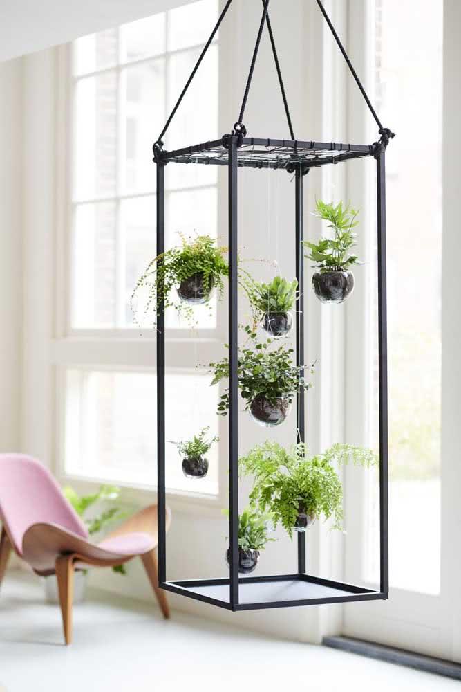 Jardim vertical de clúsia e samambaias. O verde das plantas é o destaque dessa sala minimalista