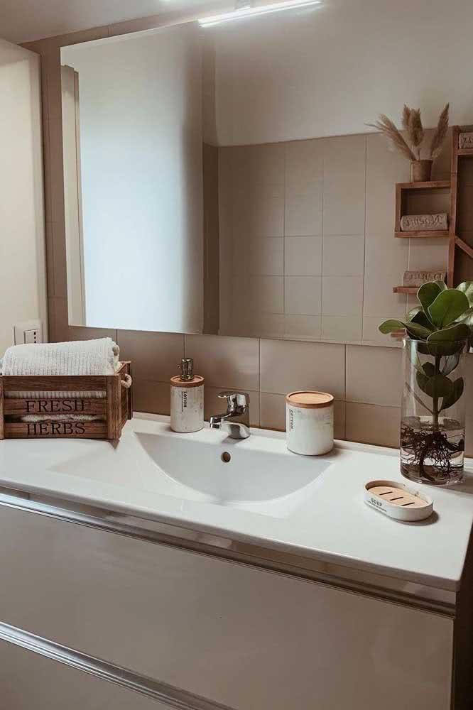 Clúsia enraizando na água: uma escultura natural para decorar o banheiro