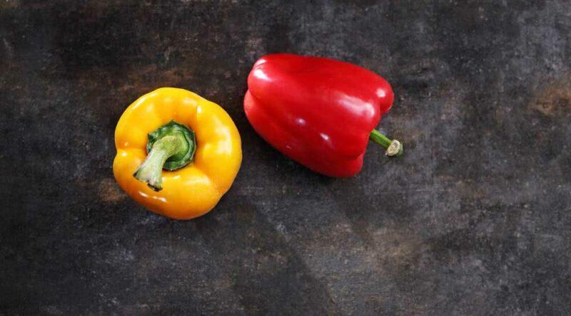 Como plantar pimentão: veja como fazer a muda e informações importantes