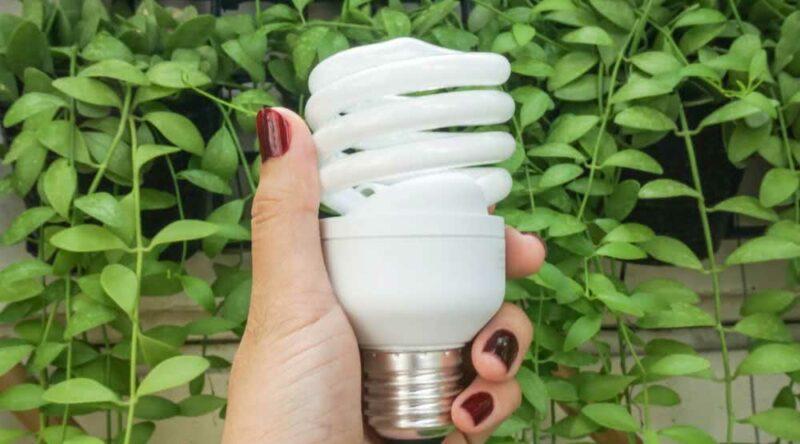 Descarte de lâmpadas: veja como fazer passo a passo fácil