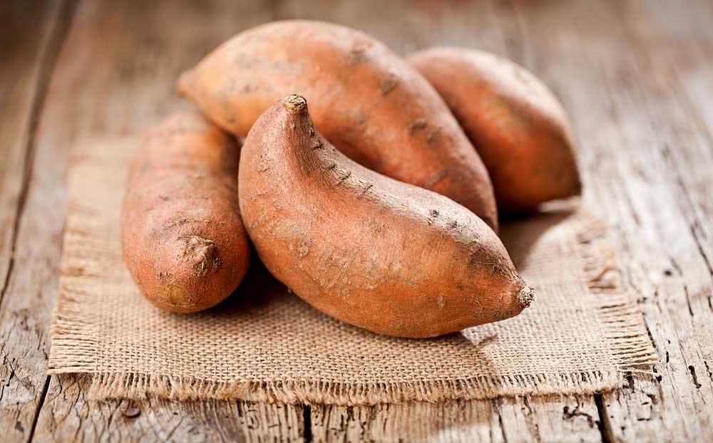 Como plantar batata doce para decoração
